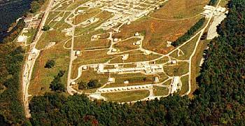 Virginia Plant
